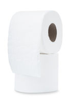 Two rolls of toilet paper