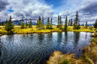 Fabulous Landscape -  lakes and firs