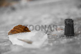 braunes Blatt im Eis gefroren - Effekt schwarz-weiß-Bild
