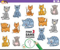 find two same cat characters game for children