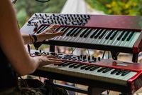 Music keyboard player at earth festival