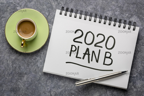 2020 plan B - change of business and personal plans