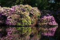 Tiergarten 022. Deutschland