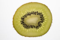 Slice of Kiwi fruit cut in backlight foto shot