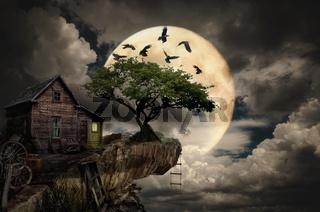 fairy house (cliff)