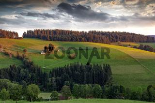 einsames Bauernhaus im Schwarzwald