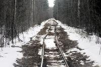 Narrow gauge railroad (dolly way) in logging.