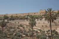 Terraces of the Kidron Valley and the the wall of the Old City in Jerusalem in Israel