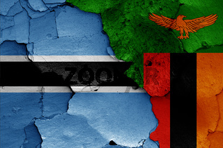 flags of Botswana and Zambia painted on cracked wall