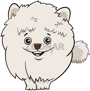 pomeranian dog or puppy cartoon illustration