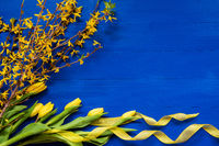 Yellow Tulip Flowers And Easter Branch, Blue Background