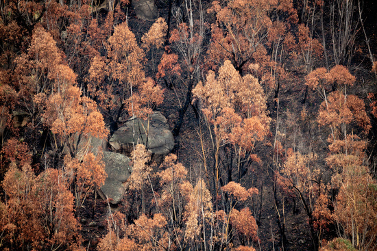 Looking down onto burnt bush land after bush fires Australia