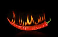 Burning pepper on black