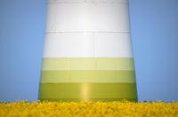 Sockel einer Windkraftanlage auf einem Rapsfeld vor blauem Himmel