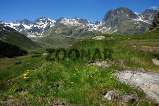 Alpenpanorama im Montafon, Silvretta, Hochmaderer, Grossvermunt