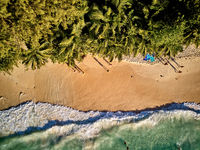 Beach at Seychelles aerial top view