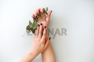 Woman holding green plant branch