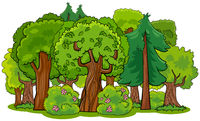 mixed forest with trees cartoon illustration