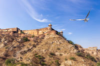 Jaigarh Fort on the hill, India, Rajasthan, Jaipur