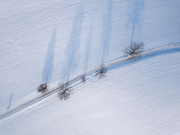 Windy winter road in snow covered fields