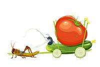 Cucumber ride