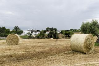 Trullo, Valle d'Itria