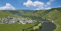 Trittenheim an der Mosel,Rheinland-Pfalz,Deutschland