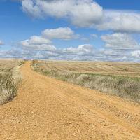 Service dirt road