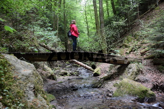 Wandern in der Hörschbachschlucht