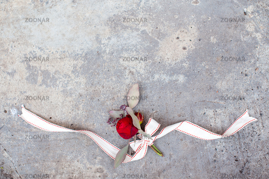 Red rose with ribbon on the concrete ground