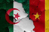 flags of Algeria and Cameroon painted on cracked wall