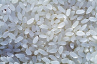 White selected rice grains as a food background
