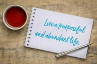 live a purposeful and abundant life