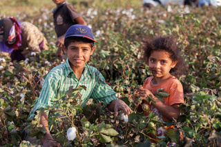 Seasonal child workers in Syrian border of Turkey
