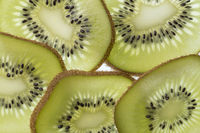 Several slices of a cut kiwi fruit in backlight foto shot