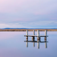 Tranquil Scene on lake neusiedlersee in winter