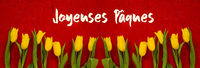 Baner Of Yellow Tulip Flowers, Red Background, Jaqeuses Paques Mean Happy Easter