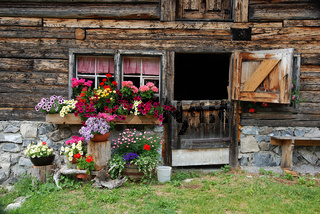 Blumenschmuck vor Almhütte im Lechtal