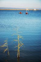 Winter on lake Neusiedlersee in Burgenland