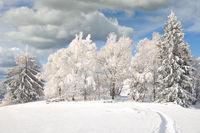 Winterlandschaft im Bayerischen Wald,Deutschland