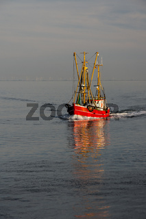 Fischkutter auf der Nordsee vor der Küste von Büsum, Schleswig-Holstein, Deutschland
