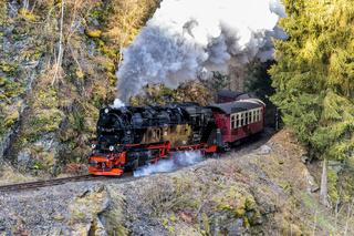 Harzer Schmalspurbahn im Selketal