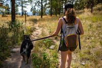 Fit young woman walking her dog on mountain trail