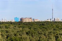 above view lush green forest and city on horizon