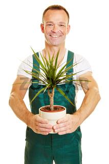 Mann mit Latzhose und Pflanze als Gärtner