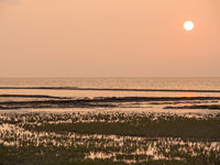 sundown an der nordsee