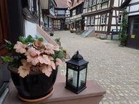 Eine Gasse der Ettenheimer Altstadt mit Fachwerkhäusern und Deko im Vordergrund