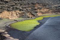 Die grüne Lagune