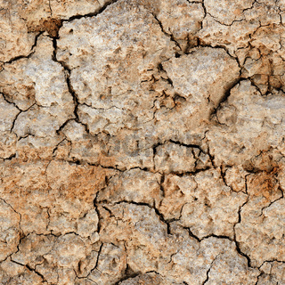 Seamless natural texture - cracked clay ground