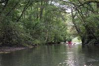 Boote im Taubergiessen Naturschutzgebiet am Altrhein
